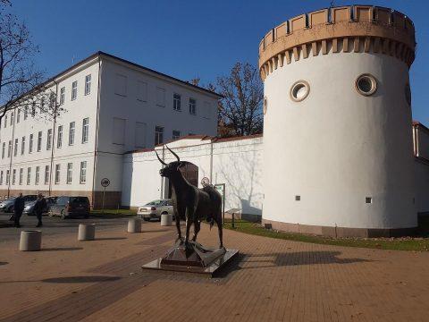 Tauragės moksleivių kūrybos centras